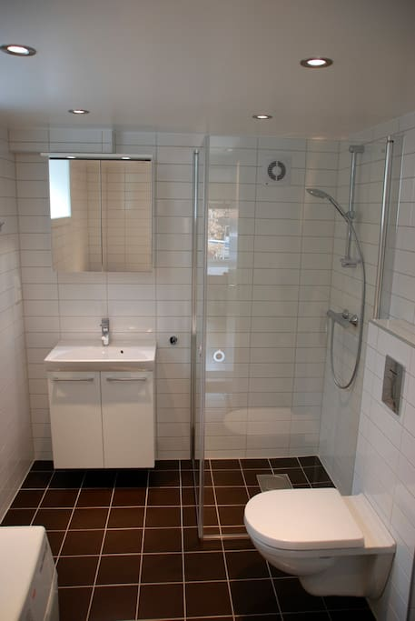 Modern bathroom with delicate shower, heated floor and washing machine