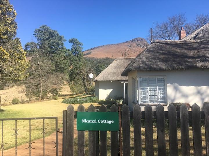 Nkunzi Cottage