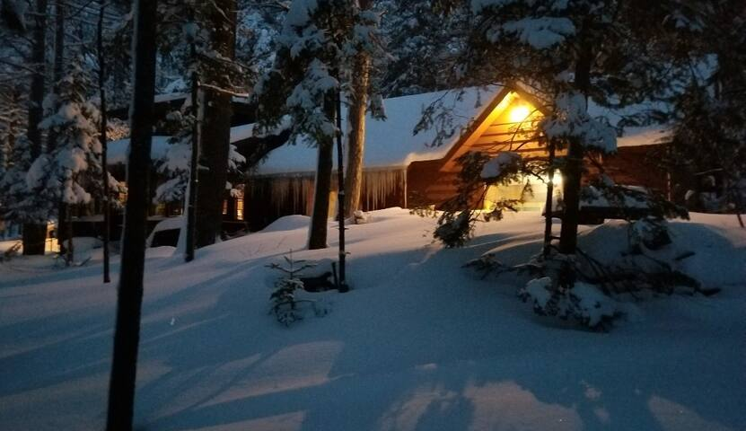 Woodland Wonderland Room #2 by Snowmobile Trails!