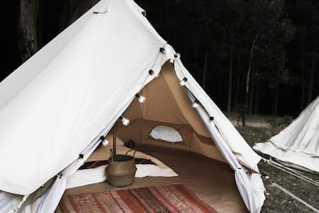 Glamping at Newnes - Tent 3 - Newnes - 帐篷