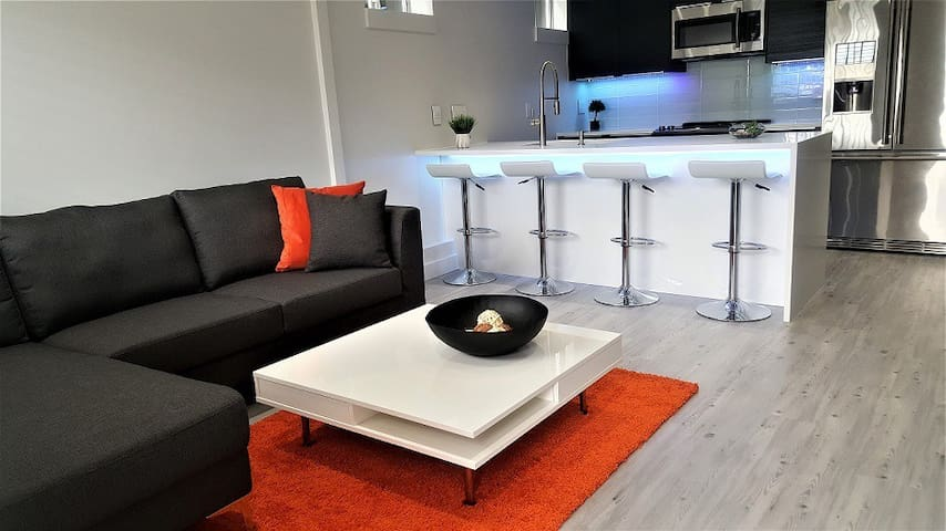 BRAND NEW VERY MODERN PRIVATE 2 BEDROOM SUITE!! - Vancouver - Suite