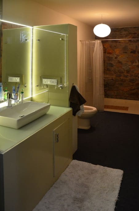 Sink , WC and shower area
