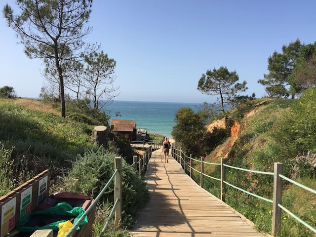 Great Apartament 350 mts from beach  Algarve - Albufeira - Leilighet
