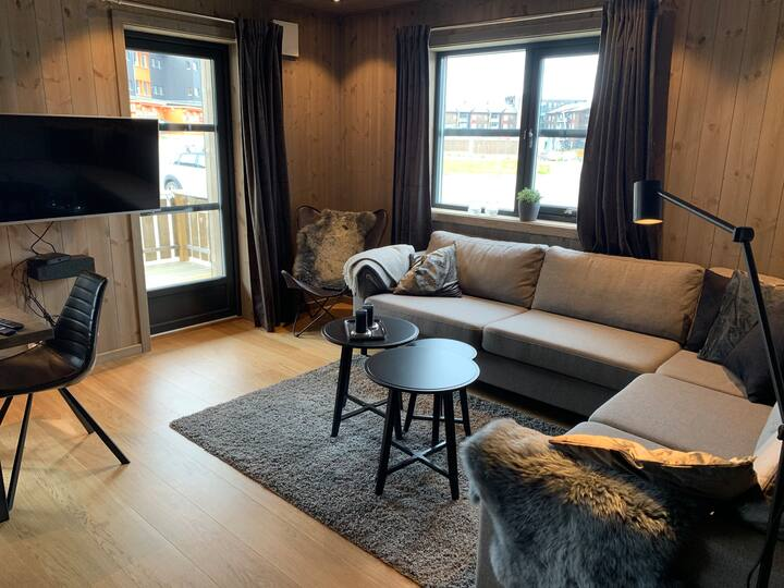 Ny leilighet veldig sentralt.