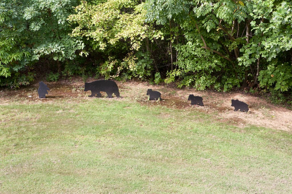 Our Bears