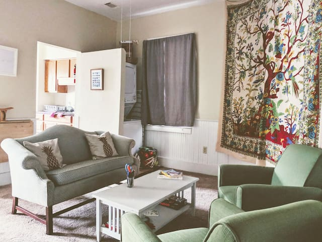Cozy Downtown Apartment, Just East of Forsyth