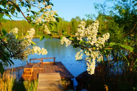 """Усадьба """"Марусина хата  """"на берегу озера Замошье"""