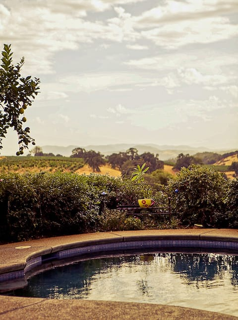 Perfect Staycation in Wine Country