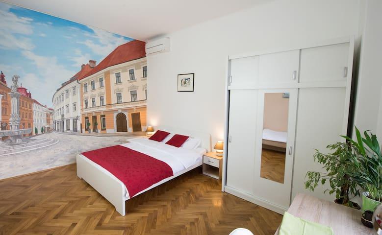Spacious apartment near center + Parking - Ljubljana - Leilighet