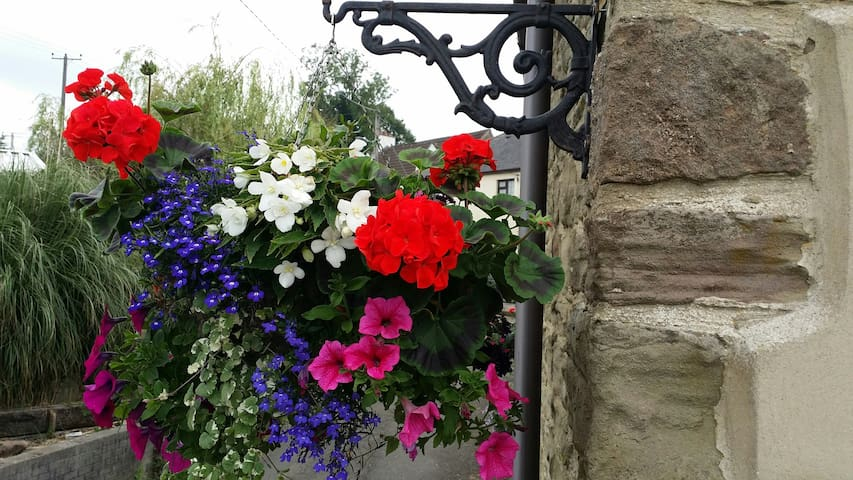 We try to display lovely hanging baskets.