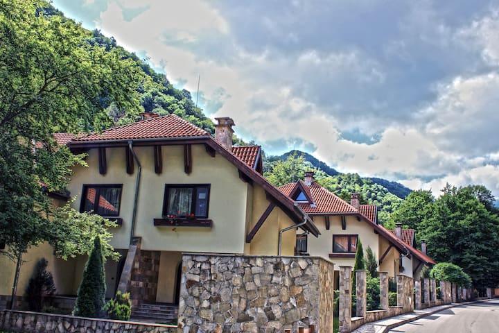 Villa 4 in Ribaritsa