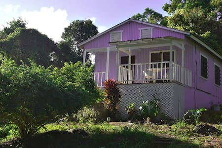 Gorgeous Cottage, El Yunque Rainforest,Great Views - Río Grande - Гостевой дом