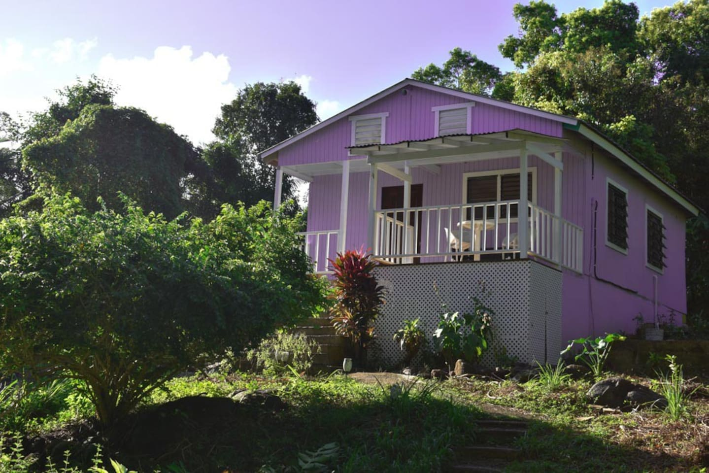 Rainforest cottage surrounded by lush foliage and fruit trees galore.