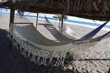 Cozy hammocks.