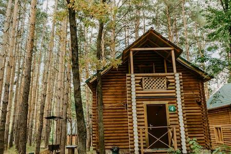 Уютный семейный домик в сосновом лесу