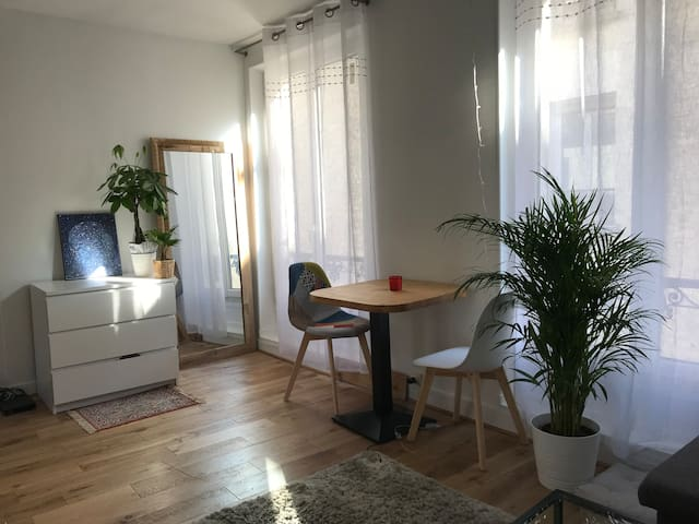Cosy one bedroom in the center of Paris - Marais