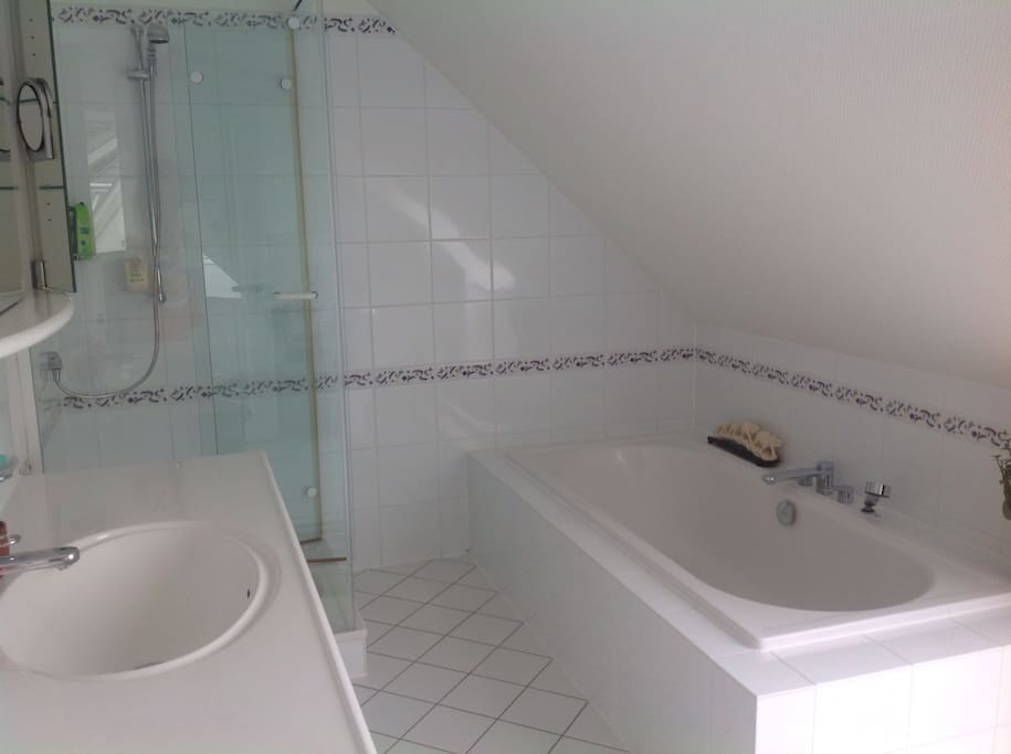 Large bathroom with shower and bathtub