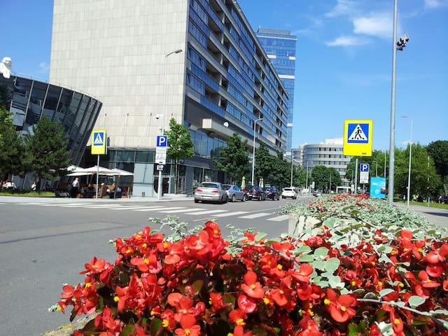 Vilnius Center Luxury Apartment VIP 2 - Vilnius - Apartment
