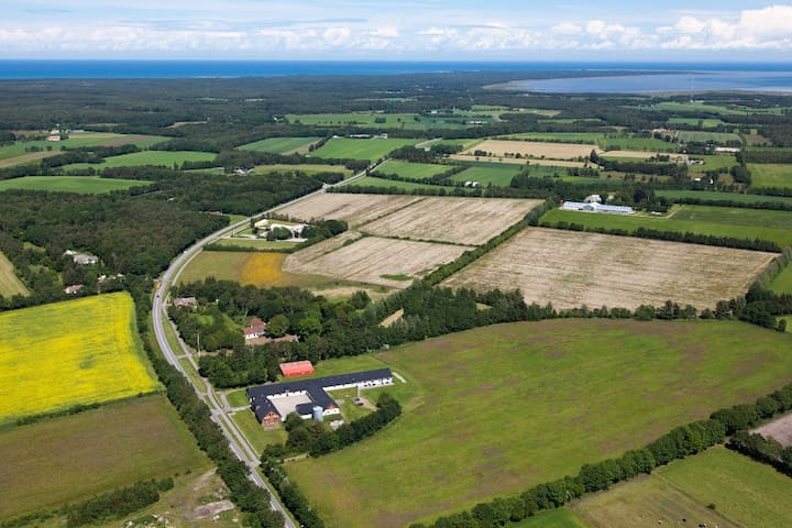 Oplev Læsø i landlige omgivelser - Læsø - Apartment
