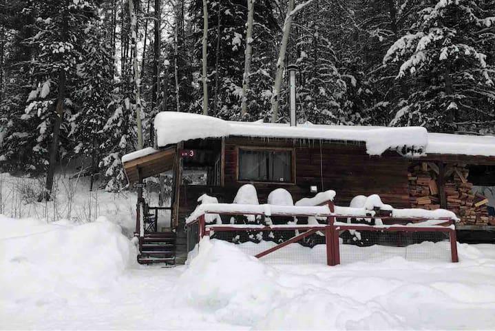 Carmi Station Cozy Cabin