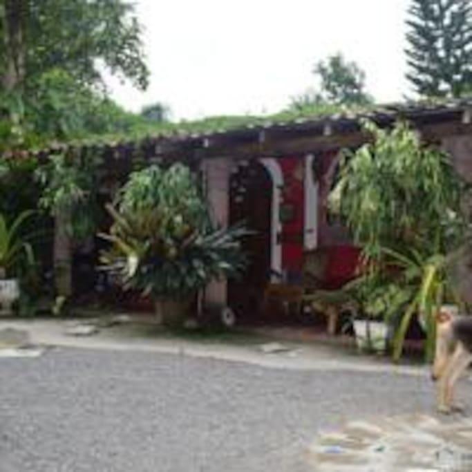 Casa principal o casona incluye dos habitaciones cocina baño privado corredores amplios con hamacas rodeado de muchas flores