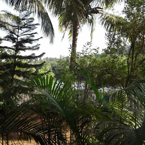 Studio apartment with riverview - Siolim - Huoneisto