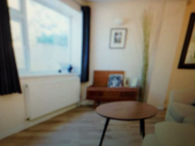 1bd flat zone 2with roof terrace - Elgin