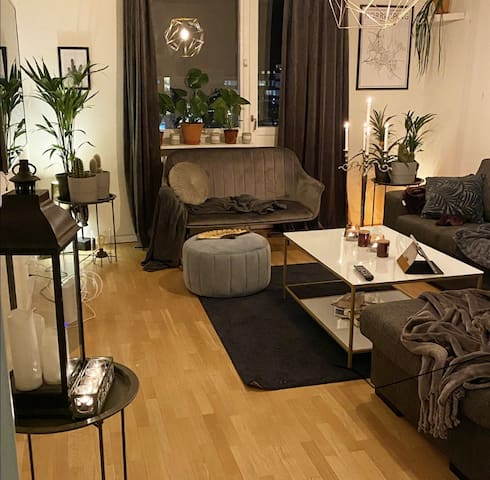 Cozy flat in the city center