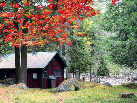 Peaceful Adirondack Cabin right on John's Brook