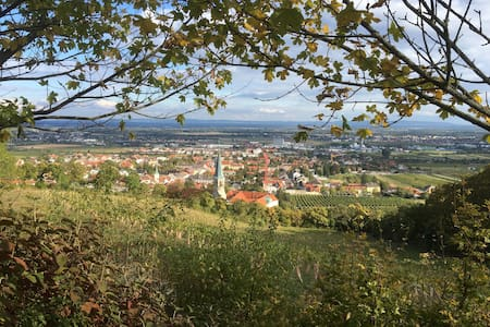 Modern and friendly studio in a nice region. - Gumpoldskirchen - Pis