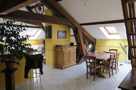 Appart. à St PIERRE LA PALUD près de LYON (69) - Saint-Pierre-la-Palud - Apartamento