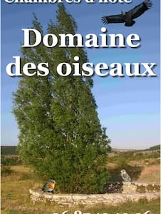 """""""Au Domaine des Oiseaux"""""""
