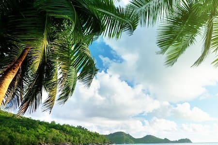 Stunning Island Vista