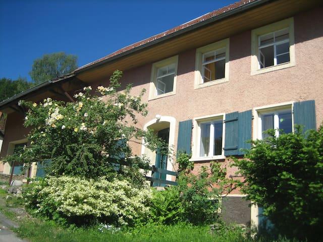 Zauberhaftes Bauernhaus - Mauchen - House