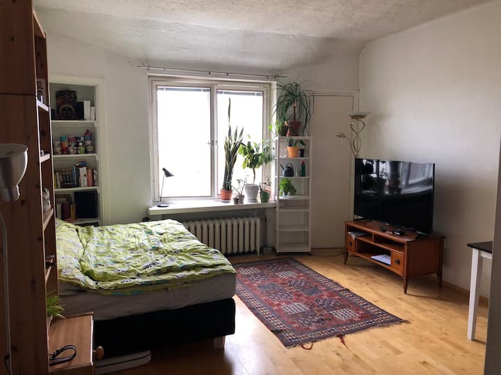 Top floor 30m2 cozy studio for rent
