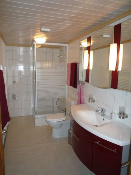 Dusche, Toilette (Badetücher werden bereitgestellt)