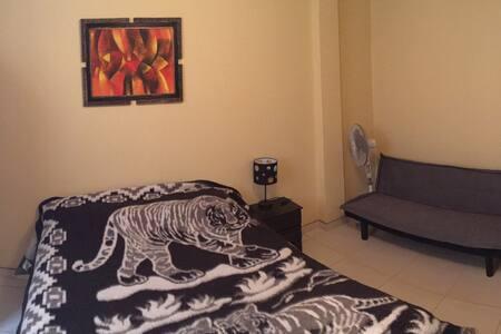Entire appt. in calm location! - Condominium