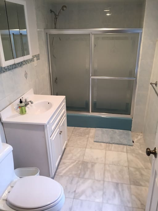 Bathroom with great shower pressure and temperature.