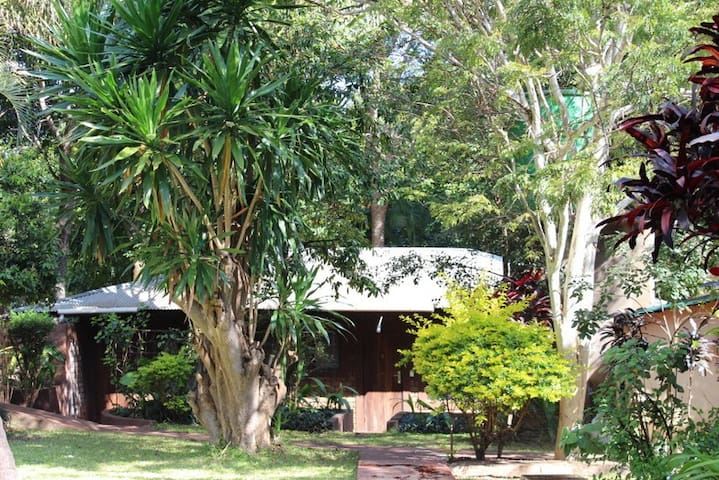 We offer 2 Executive Lodge Rooms which are spacious and set in the quiet area of the garden.