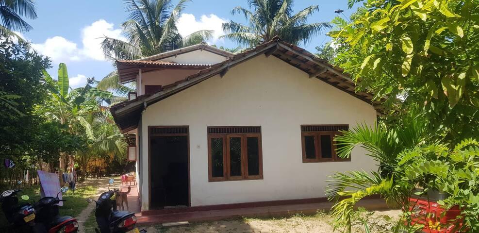 Jungle Villa (Room 2 of 5)
