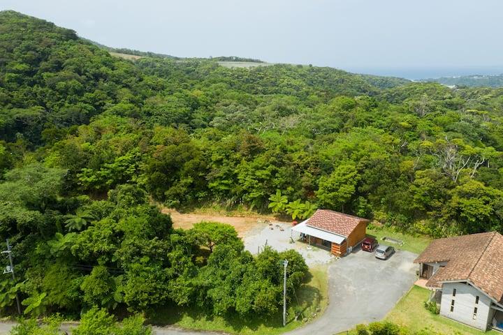 Phumula  Guest Cottage on Mango Farm in Motobu.