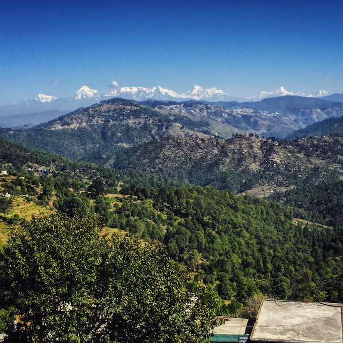 Himalayan Views from The Orchard