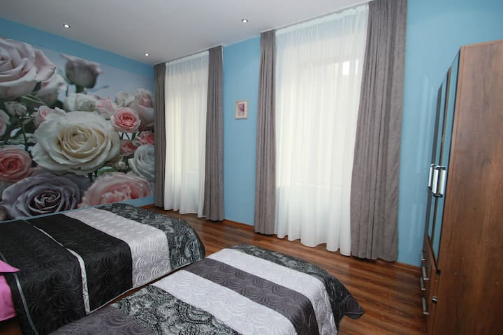 Rose apartment in Tbilisi(+transfer +tours)
