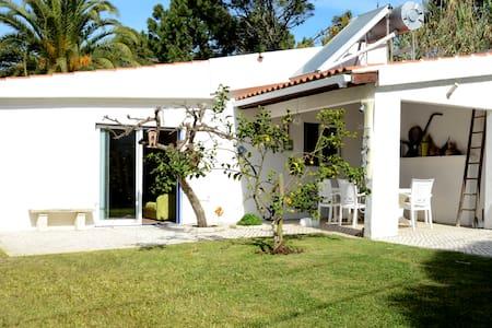 Garden house by the beach