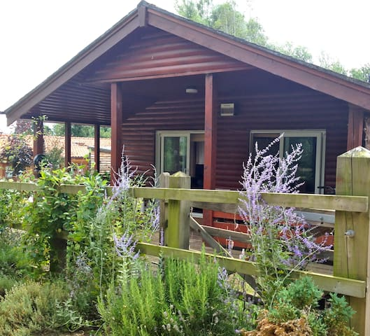 Peaceful Cabin Near the Lakes and lovely woodland - Pentney - กระท่อม