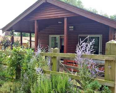 Peaceful Cabin Near the Lakes and lovely woodland - Pentney