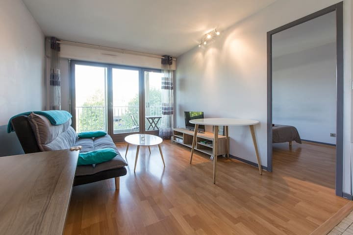 Cozy, bright, easy to access full flat in Annecy