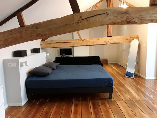 Grande chambre sous comble hyper centre