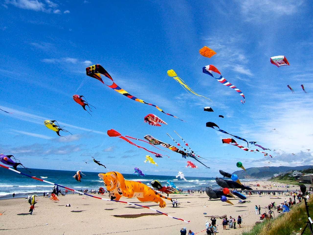 Kite festival weekend. Every summer and fall
