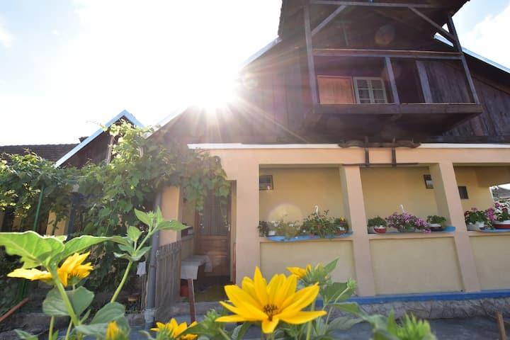 Casa Traditionala Ardeleana - Room 1
